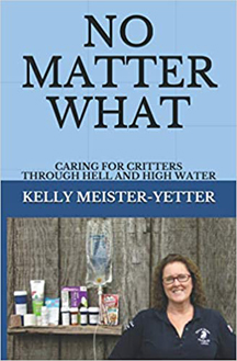 No Matter What by Kelly Meister - cover